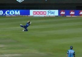 tripathi catch